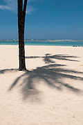 The shadow of a palm tree along Ala Moana Beach in Honolulu, Hawaii at Lahaina Noon.