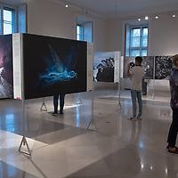 Visotors watch pictures on display at the World Press Photo exhibition in Budapest, Hungary on Sept. 21, 2018. ATTILA VOLGYI