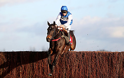 Aso ridden by Charlie Deutsch jumps the last to win The Ladbrokes Handicap Steeple Chase during the Ladbrokes Winter Carnival Friday at Newbury Racecourse.