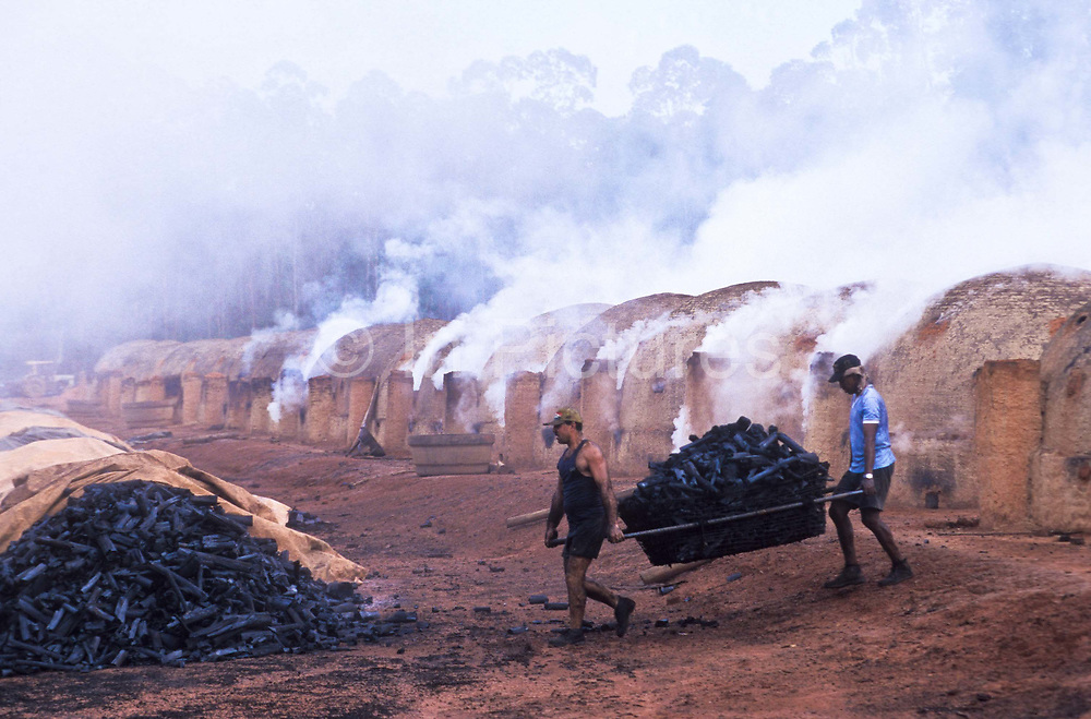Charcoal burning on ranch, Matto Grosso do Sul, Brazil