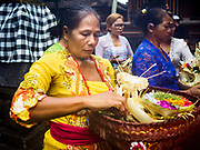 """08 AUGUST 2017 - UBUD, BALI, INDONESIA: Women participate in a ceremony to honor a family temple in Ubud, Bali. Balinese Hindus have a 210 day calender and every almost every family compound on Bali has a family temple. Once a year (or every 210 days) families celebrate the """"birthday"""" of their temple with a ceremony.     PHOTO BY JACK KURTZ"""