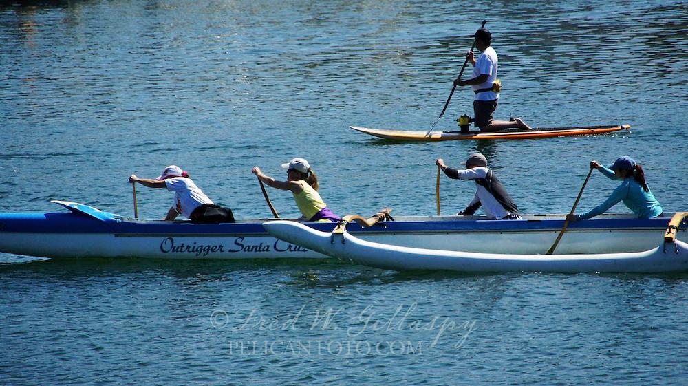 Santa Cruz Harbor ~ Outriggers ~ 6972