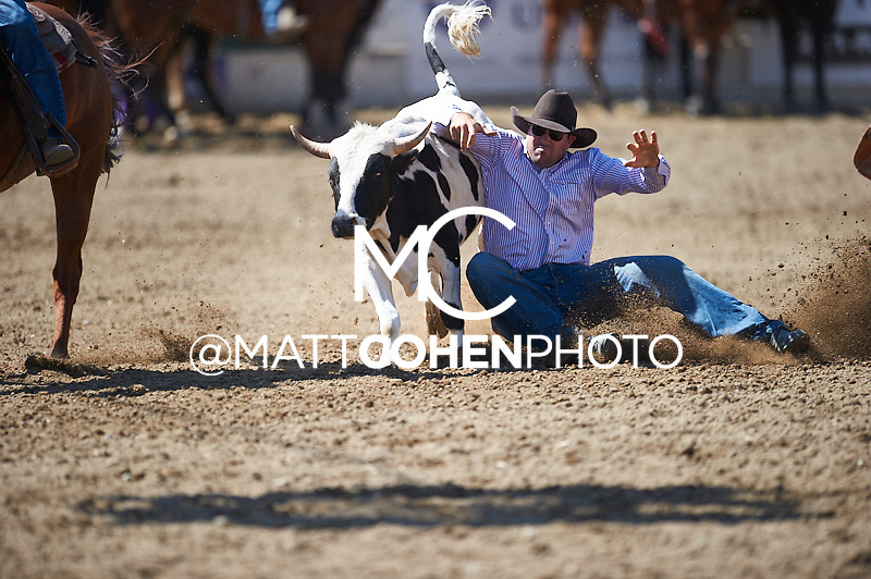 Steer wrestler Jack Vanderlans of Temecula, CA competes at the Redding Rodeo in Redding, CA<br /> <br /> <br /> UNEDITED LOW-RES PREVIEW<br /> <br /> <br /> File shown may be an unedited low resolution version used as a proof only. All prints are 100% guaranteed for quality. Sizes 8x10+ come with a version for personal social media. I am currently not selling downloads for commercial/brand use.