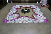 Frangipani petal picture in water Amaya Beach Resort and Spa hotel, Pasikudah Bay, Eastern Province, Sri Lanka, Asia
