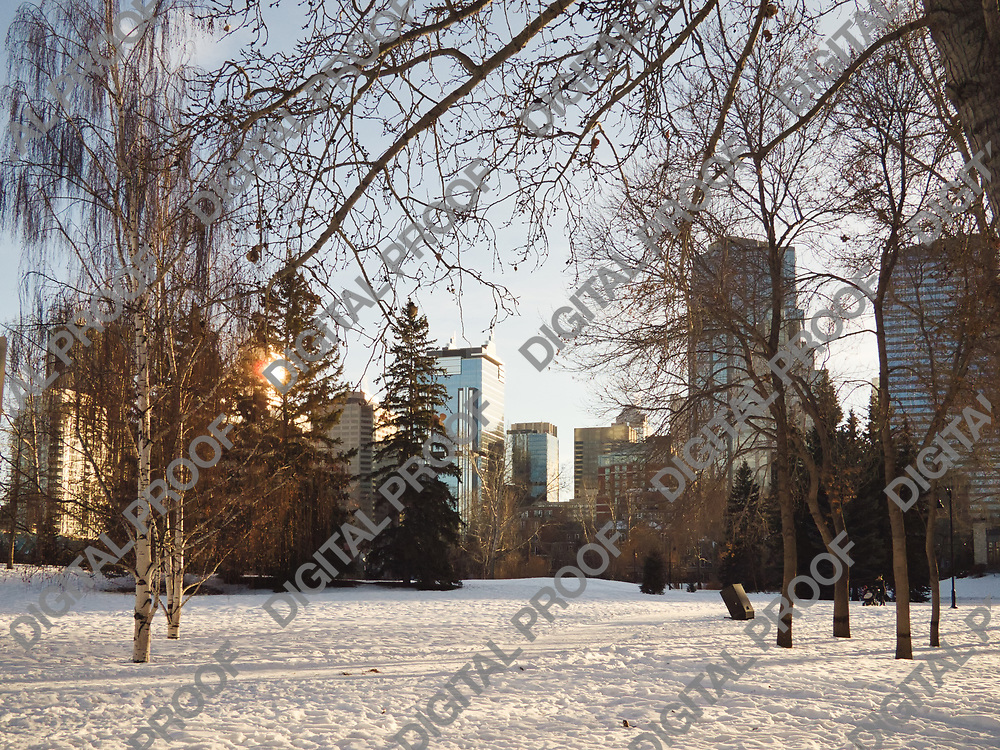 Calgary, Alberta, Canada - January 5, 2013 Calgary downtown view from a snowy Prince's Island Park during a winter afternoon