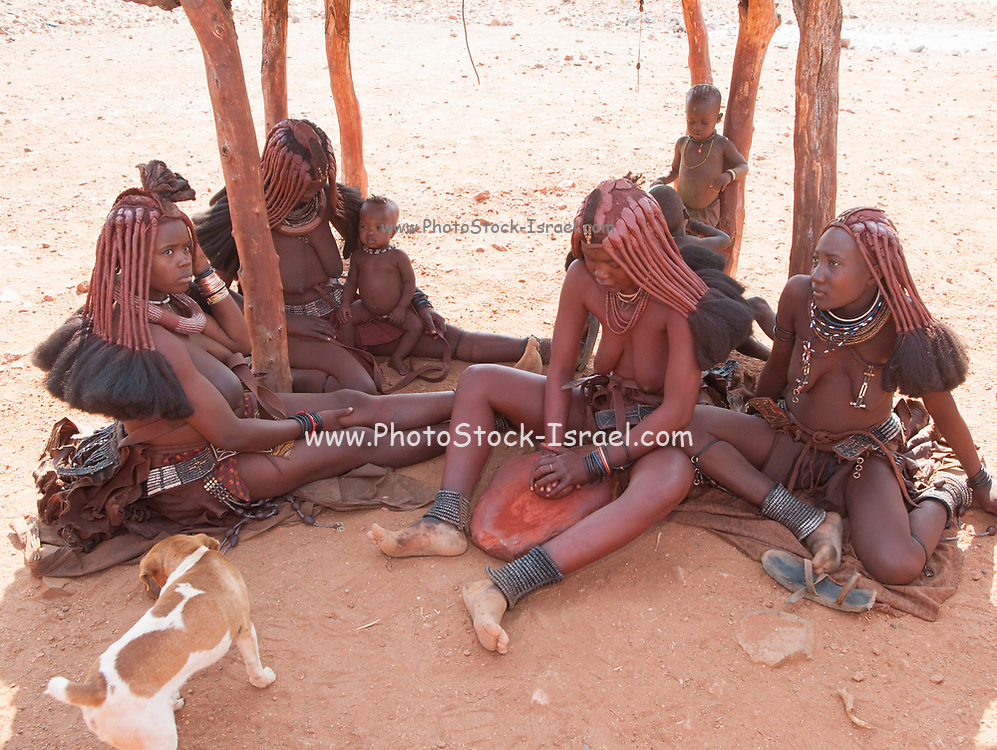 Young Himba woman wearing headgear and decorations. The Himba are a pastoral and nomadic people of northern Namibia. They tend herds of goats and cattle in the arid desert environment, living in extended families in homesteads. Both men and women go topless. Photographed in Kaokoland, Namibia, Southern Africa.