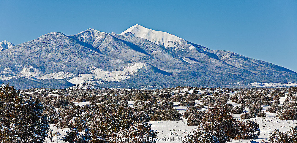 Snow in the Pinon and Juniper forest and the San Francisco Peaks