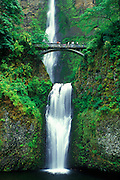 Image of Multnomah Falls along the Historic Columbia River Highway, Oregon, Pacific Northwest by Randy Wells
