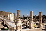 Israel, Bet Shean (Scythopolis) ancient columns found on the site,