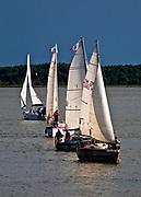 Węgorzewo, 2009-08-12. Żaglówki na Jeziorze Niegocin.