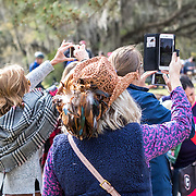 Spectators at the Red Hills International Horse Trials in Tallahassee, Florida.
