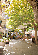 Trees and sidewalk cafe in village square on sunny day, Mesta, Chios, Greece