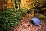 Northeast PA Landscape, camping, World's End State Park, NE PA