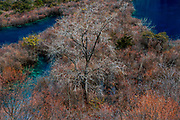 Jiuzhaigou National Park, Sichuan Province, China