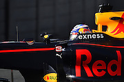 Barcelona, Spain - <br /> <br /> The Red Bull driver, Daniel Richiardo, driving his new car, during the 2nd day of Formula One tests days in Barcelona, 23rd of February, 2016.<br /> ©Exclusivepix Media