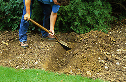 How to single dig<br /> Digging first trench, piling soil up at one end