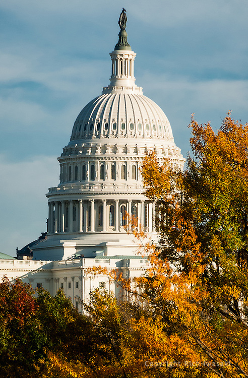 The US Capitol building in autumn, Washington, DC