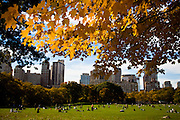 Autumn colors along the grand lawn in Central Park in New York City.