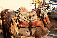 Pack Ponies saddles close up on Hydra, Greek Saronic Islands .<br /> <br /> Visit our GREEK HISTORIC PLACES PHOTO COLLECTIONS for more photos to download or buy as wall art prints https://funkystock.photoshelter.com/gallery-collection/Pictures-Images-of-Greece-Photos-of-Greek-Historic-Landmark-Sites/C0000w6e8OkknEb8