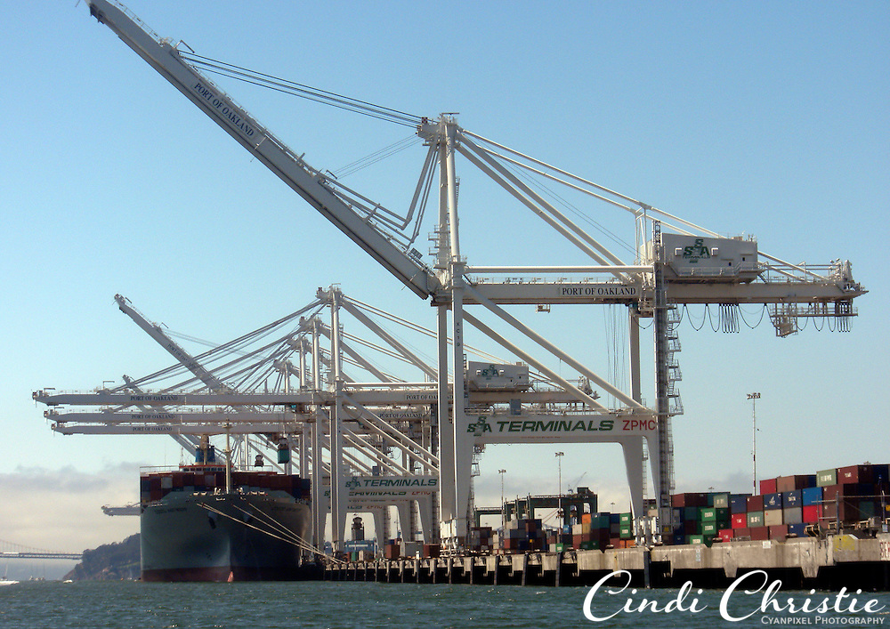 Giant cranes tower over ships including the Cosco Antwerp of Great Britain in the Port of Oakland, Calif.,  on Saturday, Aug. 6, 2011.  (© 2011 Cindi Christie/Cyanpixel Photography)
