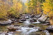 Kootenai Creek, Montana.