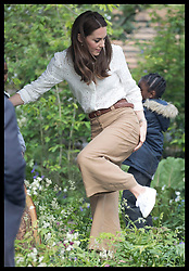 May 20, 2019 - London, London, United Kingdom - Image licensed to i-Images Picture Agency. 20/05/2019. London, United Kingdom. The Duchess of Cambridge climbs down from the tree house in her  ÔBack to NatureÃ• Garden that she helped design at the Chelsea Flower Show in London. (Credit Image: © Stephen Lock/i-Images via ZUMA Press)