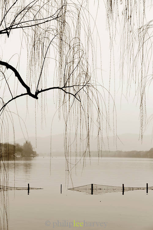Black and white landscape with view of silhouetted trees and lake at dawn, West Lake, Hangzhou, Zhejiang Province, China