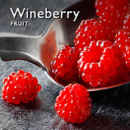 Wineberry Fruit   Fresh Wineberries  Fruit Food Pictures, Photos & Images