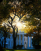 Sun shining through trees above the north portico of the White House, Washington, District of Columbia.