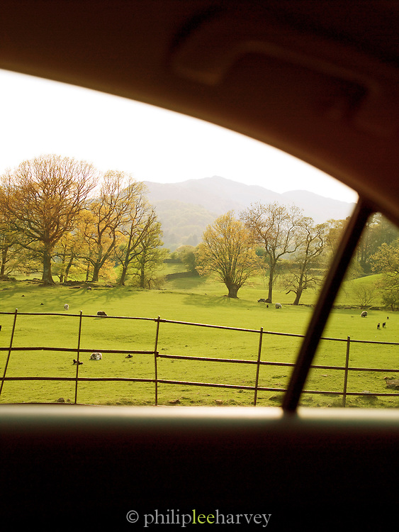 Rural green fields and countryside in the Lake District, UK