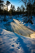Animal tracks near frozen pond near Inari, Lapland, Finland