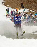 Gunstock's annual BYODC pond skimming event Sunday, April 7, 2013.  Karen Bobotas/for the Laconia Daily Sun