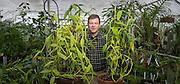 Botany professor Ken Cameron shows off 2 vanilla orchids. (Photo © Andy Manis)