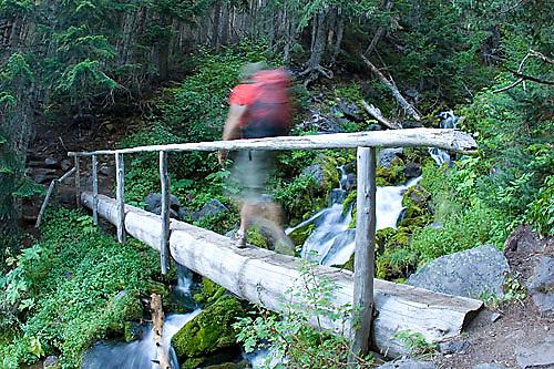 Young man hiking in Mount Rainier National Park, WA