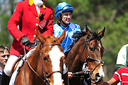 27 March 2010 : Danielle Hodson aboard former Carolina Cup winner Mixed Up leaves the paddock for the first race, a training flat race.