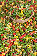Peppers of various colors that will spicy  many of the famous Bahian dishes.