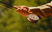 Drops of water spin from a fly fishing reel as line is stripped out.