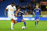 Hull City's Tom Huddlestone (l) shields the ball from Cardiff City's Fabio De Silva. Skybet football league championship match, Cardiff city v Hull city at the Cardiff city stadium in Cardiff, South Wales on Tuesday 15th Sept 2015.<br /> pic by Carl Robertson, Andrew Orchard sports photography.