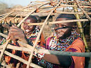 Maasai tribeswomen traditionally do the building and maintenance around the village while the men tend to their cattle. Tipilit village near Amboseli National Park, Kenya