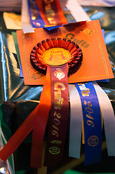 © Licensed to London News Pictures. 10/03/2016. A selection of Crufts competition rosette awards. Crufts celebrates its 12th anniversary as the Worlds largest dog show. Birmingham, UK. Photo credit: Ray Tang/LNP