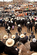 Amish men at the horse auction during the Annual Mud Sale to support the Fire Department  in Gordonville, PA.
