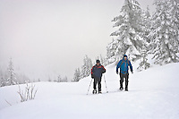 Two backpackers snowshoe along the trail through new snow to High Hut along the Mount Tahoma Trails hut-to-hut crosscountry ski and snowshoe trail system in the Cascade Mountain Range near Mount Rainier, Washington state, USA