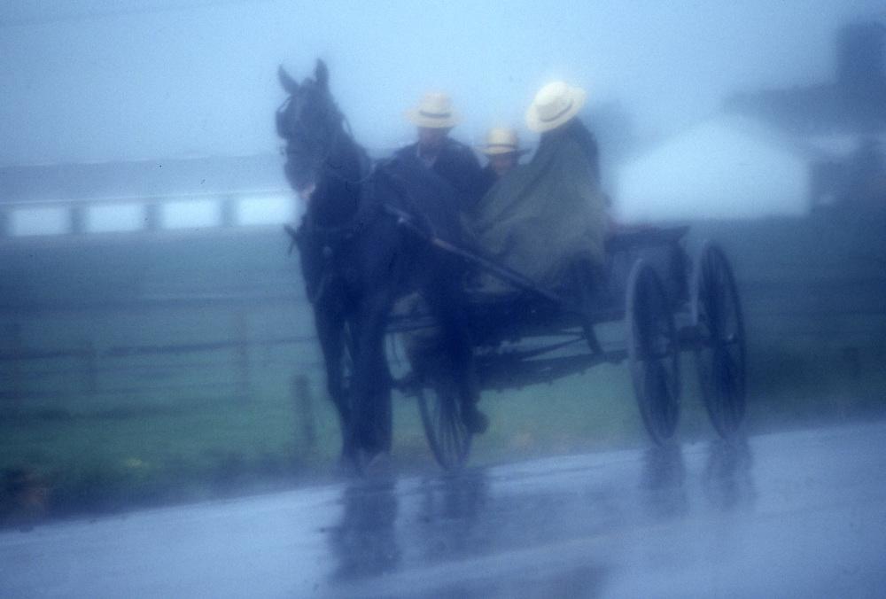 Amish buggy travel, foggy, rainy, Lancaster, PA