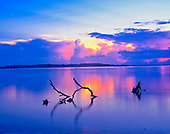 Florida Images