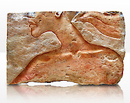 Ancient Egyptian relief portrait fragment of King Akhenaten from Amarna. 18th Dynasty 1345 BC . Neues Museum Berlin 1985.328.3: Gift from New York Metropolitan Museum, Norbert Schimmel. .<br /> <br /> If you prefer to buy from our ALAMY PHOTO LIBRARY  Collection visit : https://www.alamy.com/portfolio/paul-williams-funkystock/ancient-egyptian-art-artefacts.html  . Type -   Neues    - into the LOWER SEARCH WITHIN GALLERY box. Refine search by adding background colour, subject etc<br /> <br /> Visit our ANCIENT WORLD PHOTO COLLECTIONS for more photos to download or buy as wall art prints https://funkystock.photoshelter.com/gallery-collection/Ancient-World-Art-Antiquities-Historic-Sites-Pictures-Images-of/C00006u26yqSkDOM