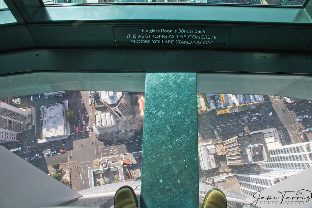View down through the glass floor of the Skytower, a 1,082 foot observation tower, landmark of Auckland,  North Island, Auckland, New Zealand