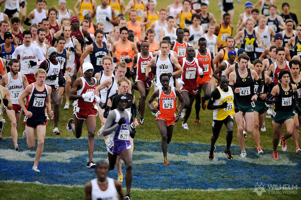 24 NOV 2008:  The men's field runs through the start area during the 2008 NCAA Men's Division I Cross Country Championship hosted by Indiana State University held at the Wabash Valley Family Sports Center in Terre Haute, IN. Galen Rupp of the University of Oregon placed first with a time of 29:03.2 to win the men's national title, while the University of Oregon also won the men's team title. © Brett Wilhelm