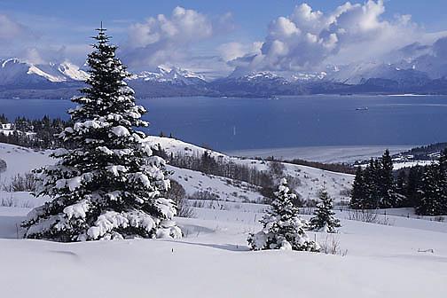 Kachemak Bay at Homer, Alaska.