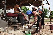 Part of the gold extraction processing is to crush the stones dug out. Here a mother is working with her baby on her back.  The mines in the small community near Bolgatange in Northern Ghana are dug with shovels and spades and held up by timber, all very precarious. The mine shafts go deep into the ground and run along under the surrounding fields. The small community which has sprung up around the gold finds consists of poor people from all over Northern Ghana,most of them now stuck, not making much money and in dept to their gold dealers.