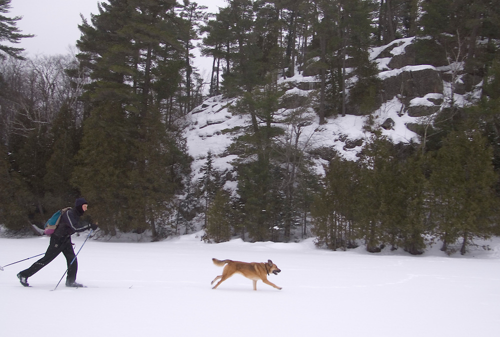 A backcountry skier crosses a frozen lake with his dog while exploring McCormick Wilderness Area near Michigamme, Mich.
